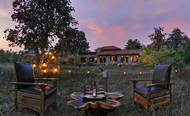 8 Safari-Honeymoon-in-India-Bridal-Musings-Wedding-Blog--630x384